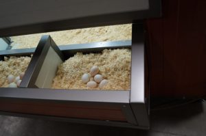 Huehnerstall DUO Nest