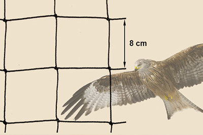 Raubvogelnetz - schützt Hühner vor Greifvögeln