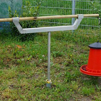 Hühner mit Futterautomat im Garten füttern