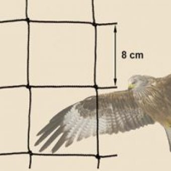 Raubvogelnetz - schuetzt Huehner vor Greifvoegeln