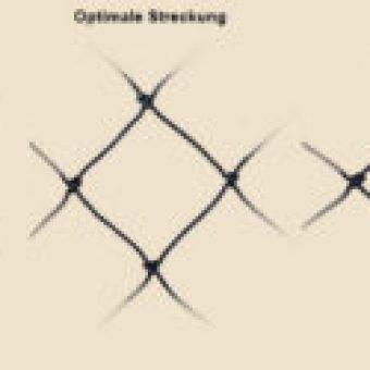 Raubvogelnetz-Streckung
