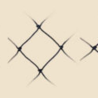 Raubvogelnetz